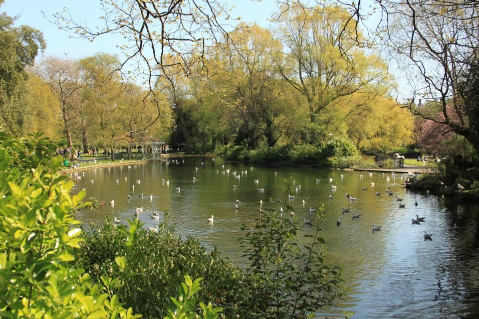 Vue sur le lac et la végétation - prise depuis le petit pont en pierre du parc St Stephen's Green