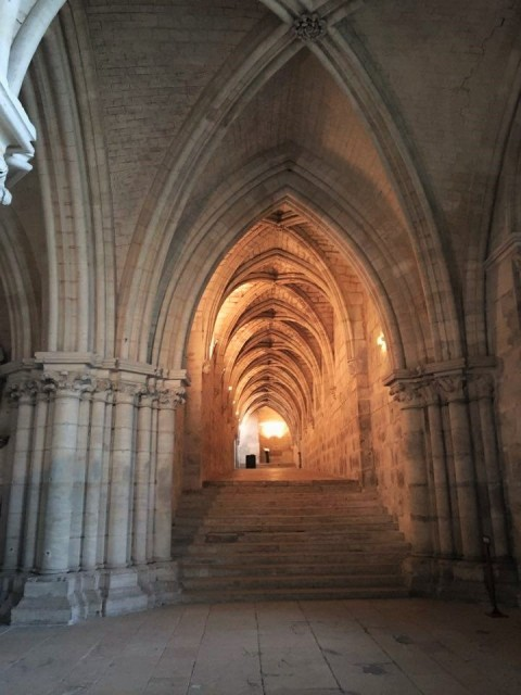 crypte_cathédrale_bourges
