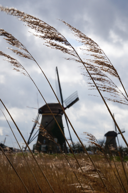 moulin-hollande-kinderdijk