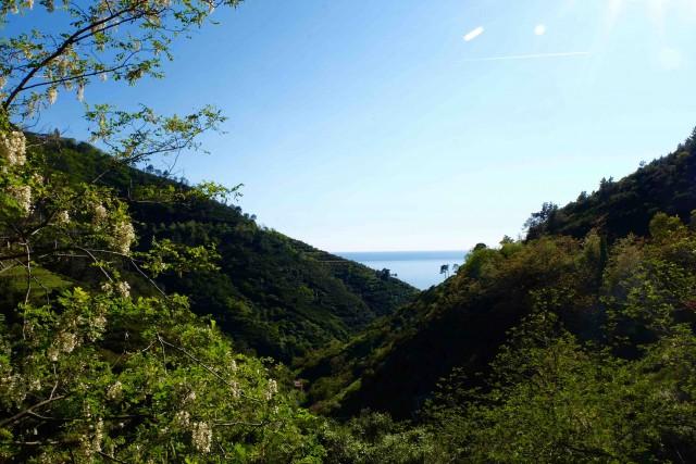 cinque-terre-italie-route-manarola-collines