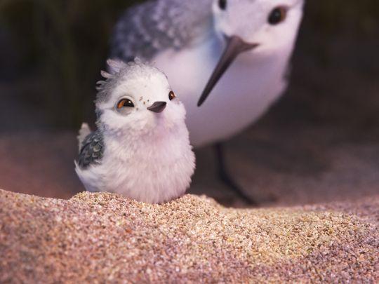 piper-court-métrage-pixar