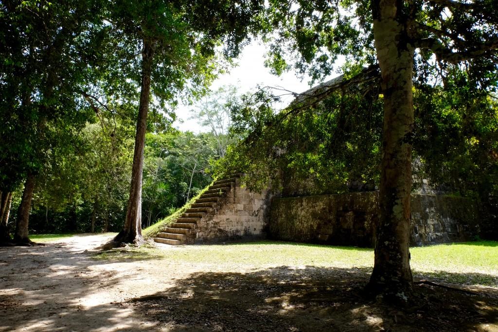 pyramides-tikal-guatemala